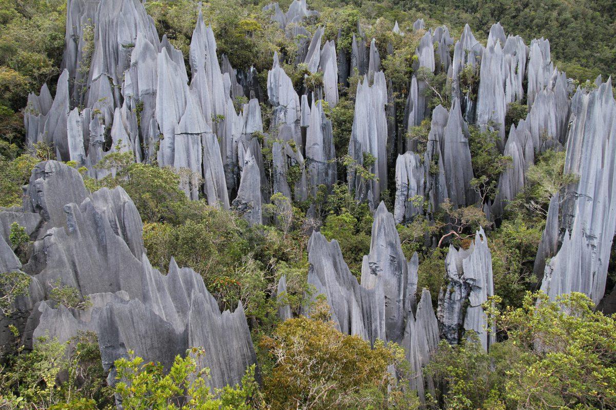 park narodowy Mulu
